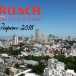 Sensei Challenge 2018